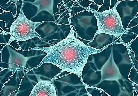 纳米科学: 从烟草到网络木材!