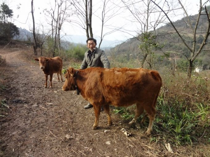 妈妈环保志愿者协会启动春节餐桌助农计划