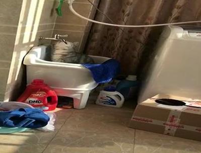 猫咪不肯喝盘子里的水,非要去水龙头舔水喝,小表情亮了