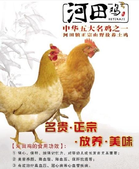 """不仅""""吃鸡""""还要养鸡"""
