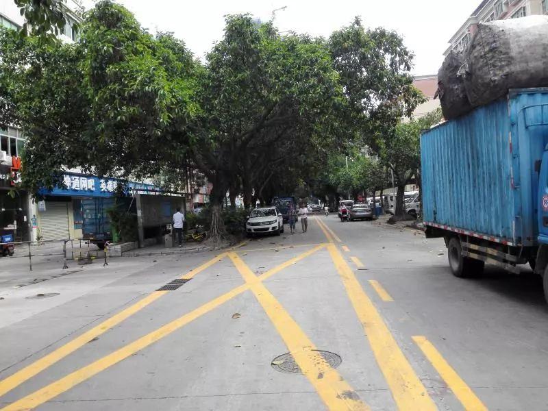 码头路改造完工!双向四车道、节能环保路灯、美美的行道树…街坊点赞:变化很大!